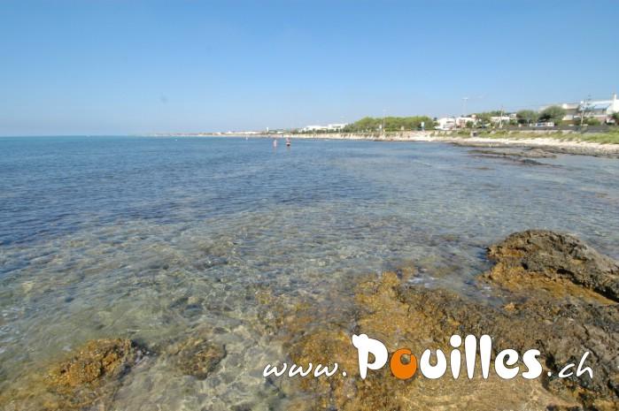 photo-pouilles_038