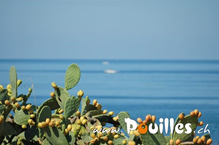 photo-pouilles_081