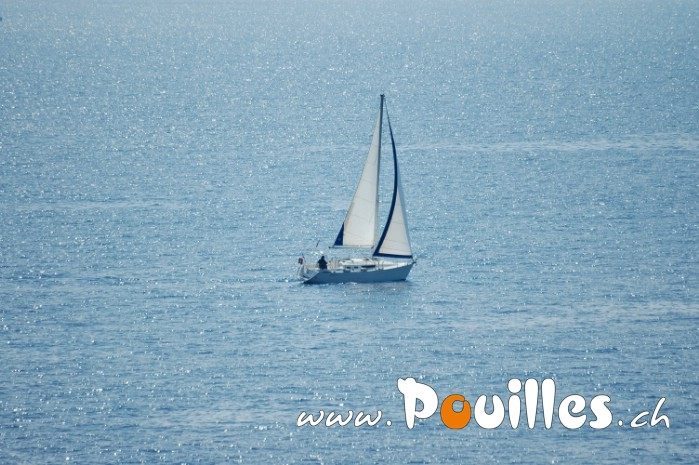 photo-pouilles_101