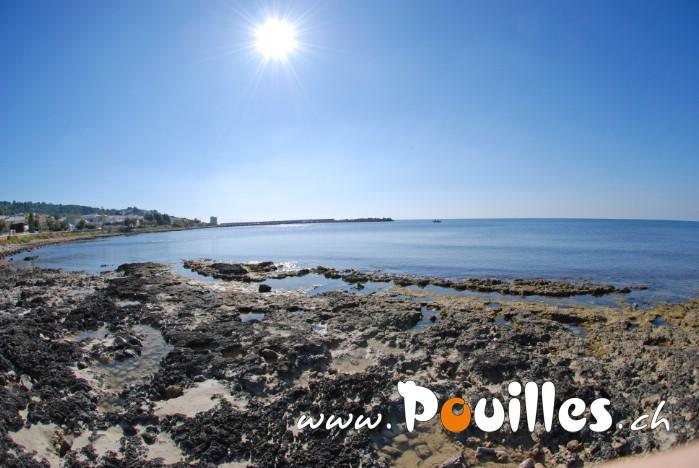 photo-pouilles_148