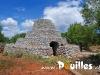 histoire-photo-pouilles_060
