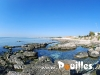 photo-pouilles_152